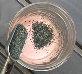 sugar-free poppy seed dressing