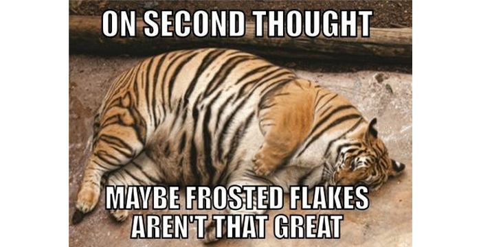 on 2nd thought, frosted flakes aren't that great