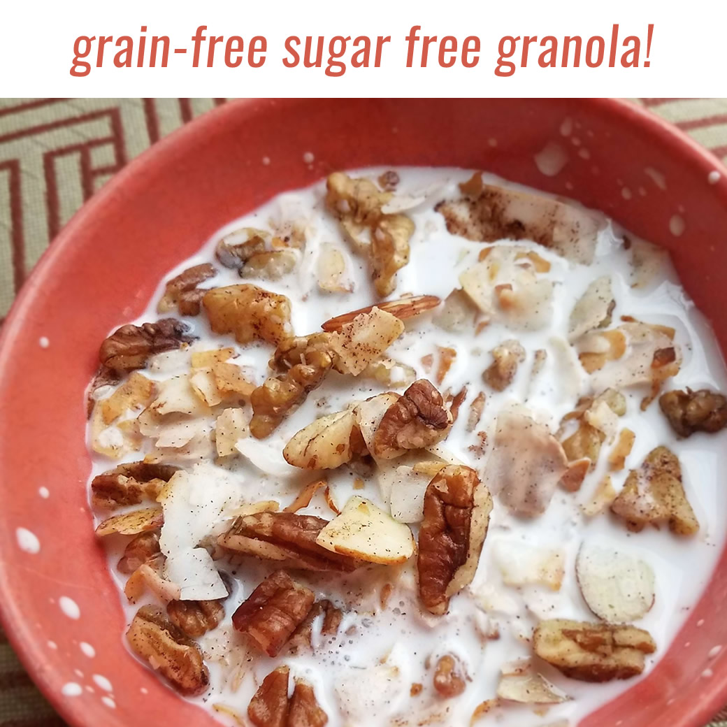 grain-free sugar-free granola or cereal