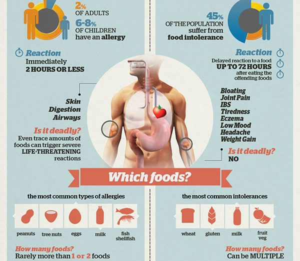 Food allergy vs food intolerance chart