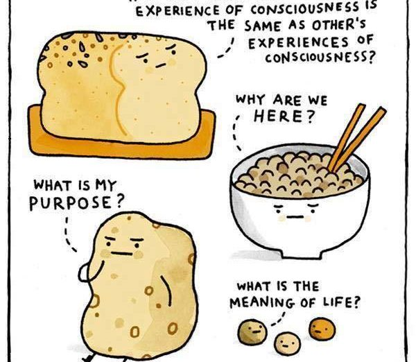 funny - complex carbohydrates
