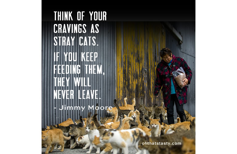 Think of your cravings as stray cats; if you feed them, they'll never leave.